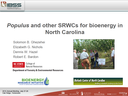 Populus and other SRWC's for Bioenergy in North Carolina